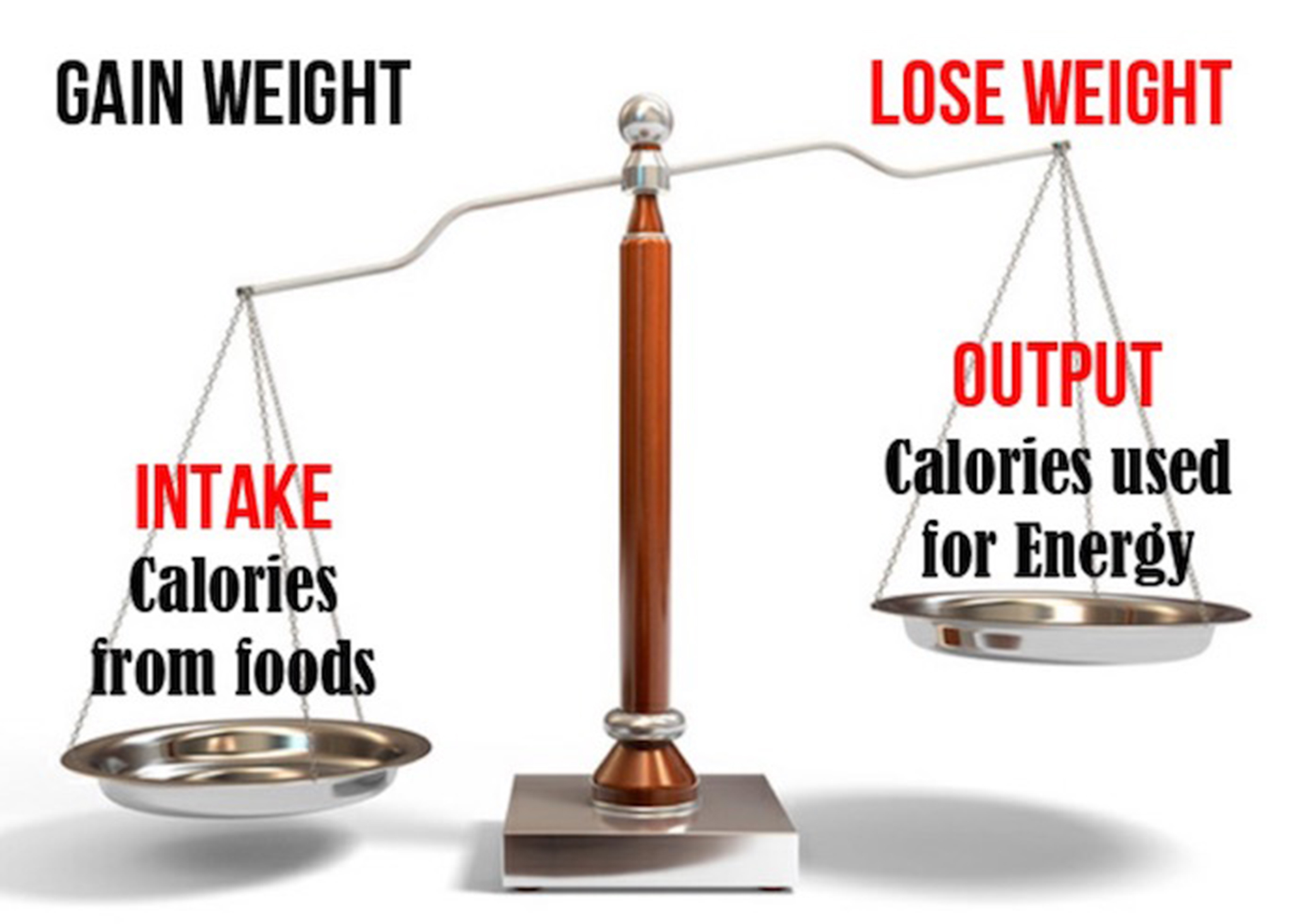 Exercise vs. Diet: Which Is More Important for Weight Loss?