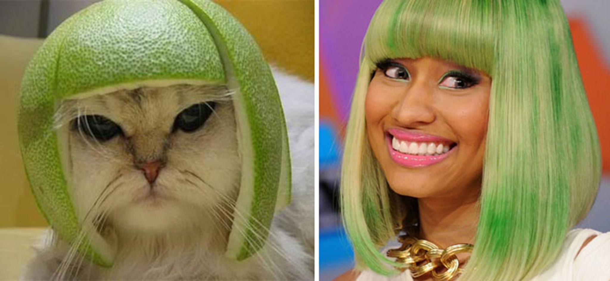 11 Pomelo Cat And Nicky Minaj
