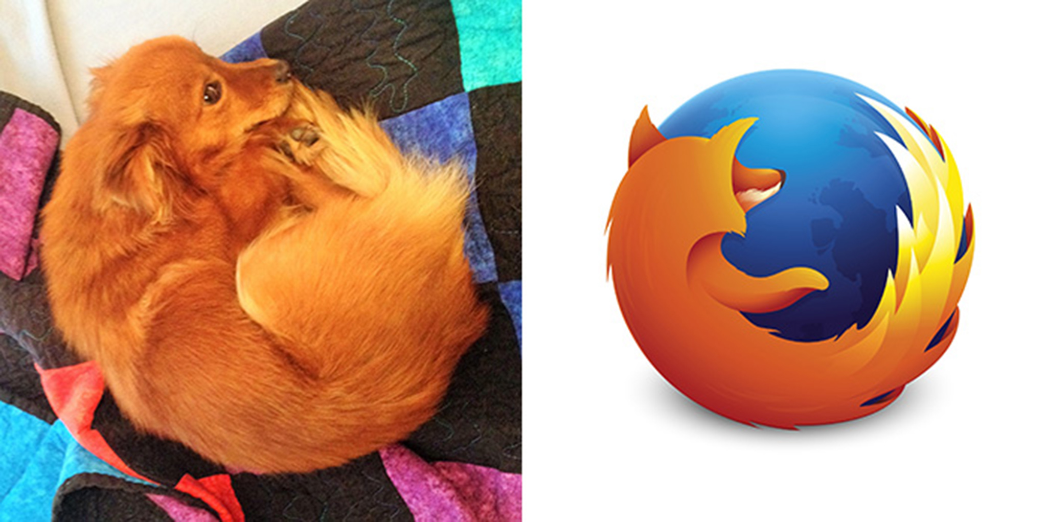 15 Firefox Dog