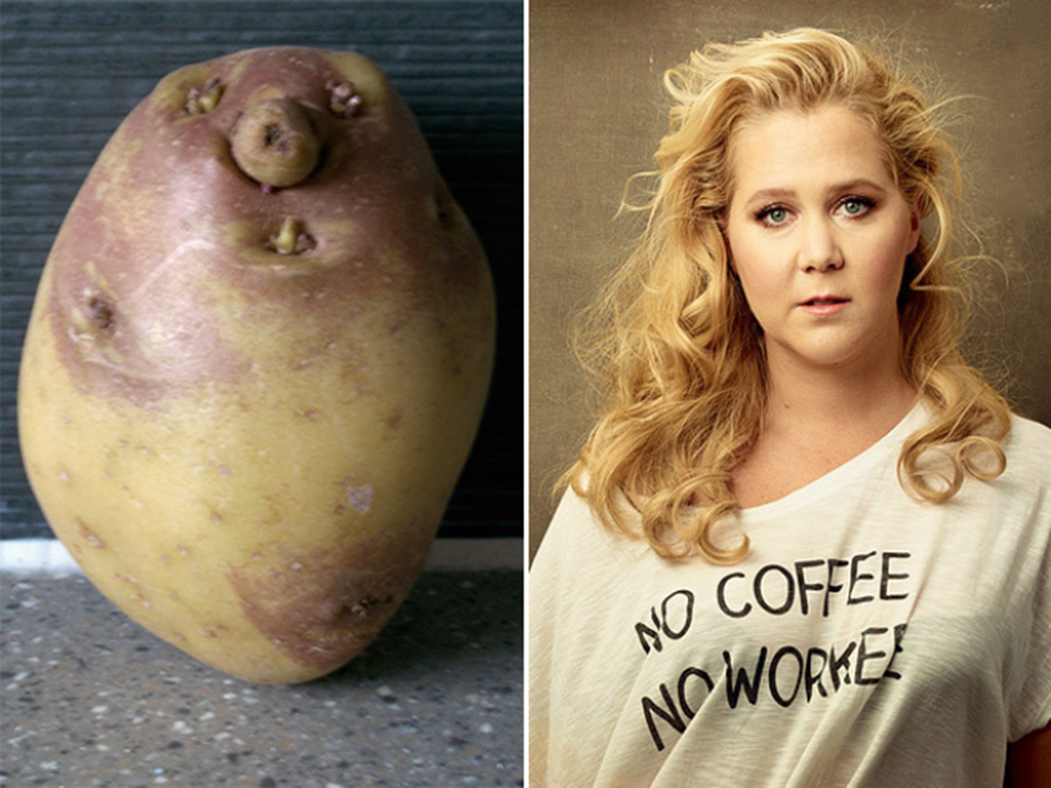 Can You Spot The Difference Amy Schumer Vs Potato