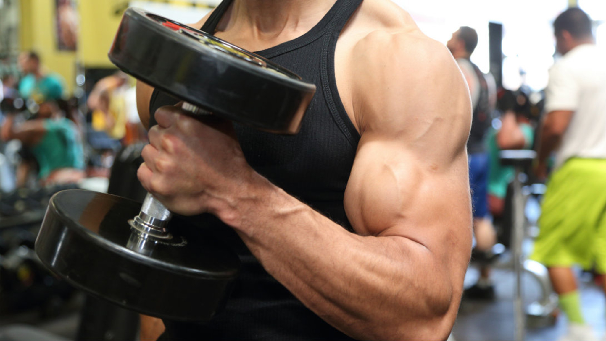 Hardgainers Tips To Build Arm Muscles Gymbuddy Now