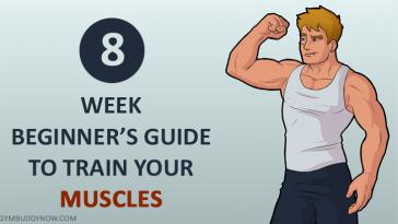 beginners-plan