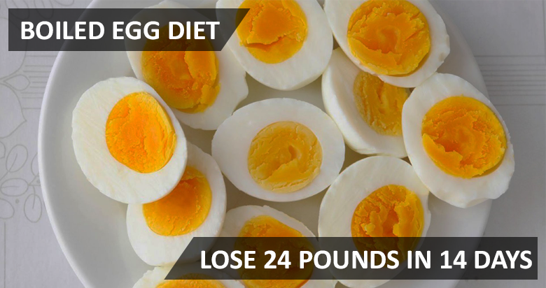 Lose 24 Pounds In 14 Days With Boiled Eggs Diet Meal Plan Gymbuddy Now