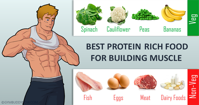 Best Muscle Protein Foods